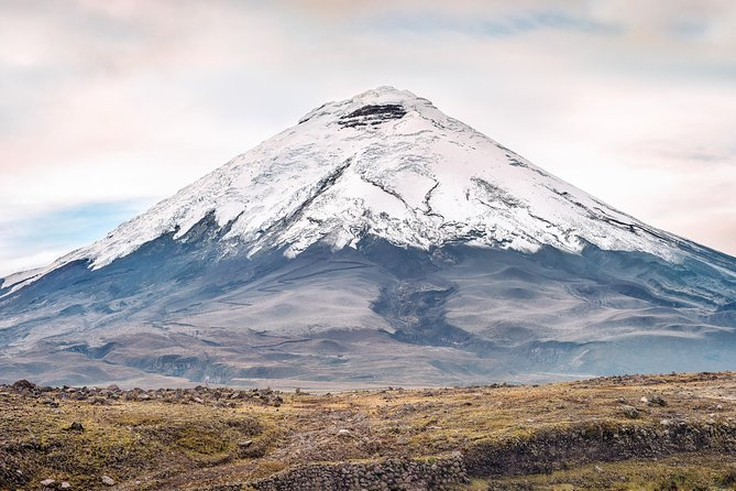 Cotopaxi`s National Park Full Day photo 4