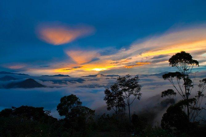Dia inteiro em Mindo Cloud Forest