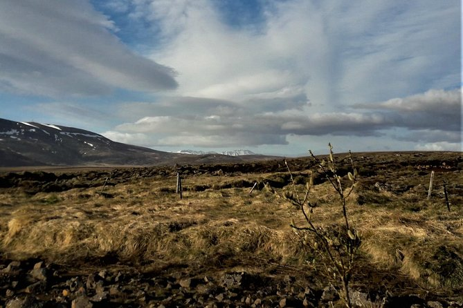 Reykjanes peninsula-perfect 1st day in Iceland