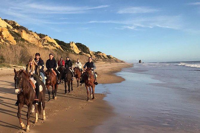 Horse riding through Doñana and visit El Rocio