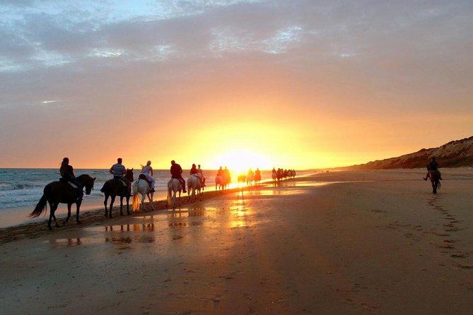 Sunset on horseback through Doñana + visit of El Rocio