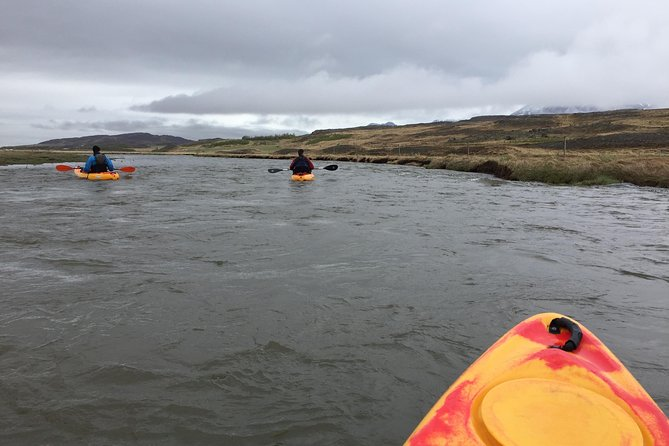 Guided Sit on Top Kayak Tour