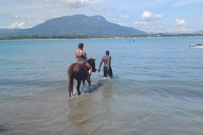 Beach Horseback Riding in Puerto Plata
