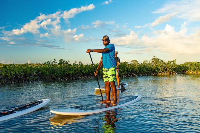 Mangrove Cay Excursions