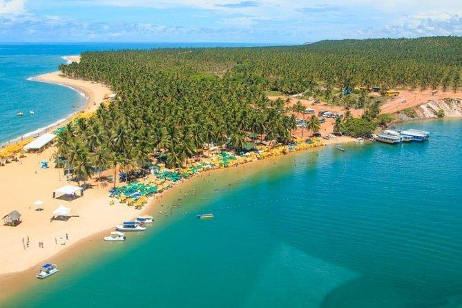 Praias do Sul (Francês, Barra de São Miguel e Gunga)