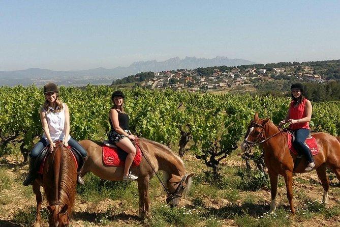 Horseback Ride, Penedés, Wine Tasting & Tapas Lunch