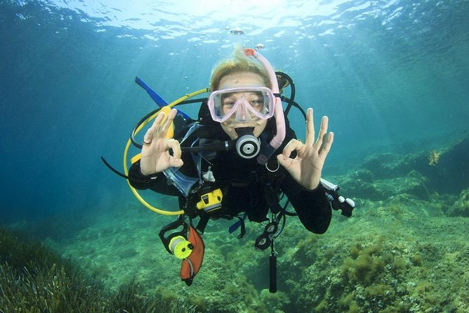 Discover Scuba Diving Boat Trip 2 Stops intro Diving - Hurghada