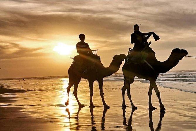 Agadir Camel Riding +Sunset and Dinner