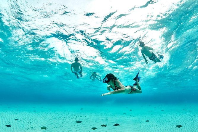 COZUMEL TOUR PLUS: Immerse yourself snorkeling in the water of the Caribbean