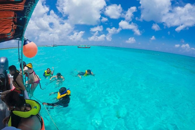 Live a UNIQUE experience in COZUMEL SNORKEL PLUS at the Caribbean Sea photo 2