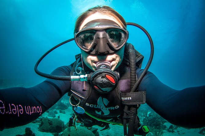 Guided Shore Dive for Certified Divers with Scubaçao (2 tank)