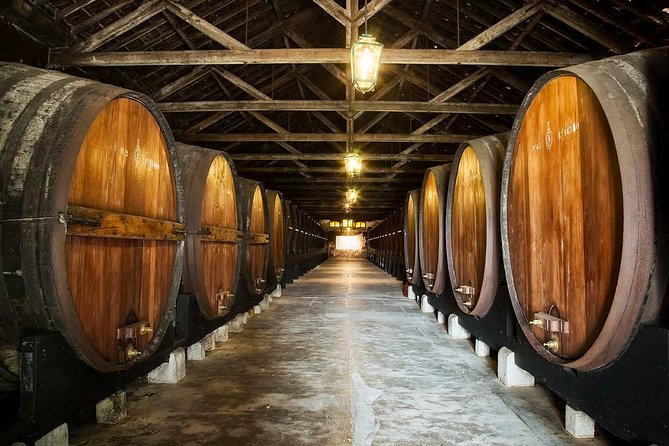 Private Lisbon wine tasting tour in the Setubal region