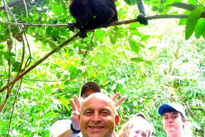 Private Altun Ha Maya Ruin & Howler Monkey Adventure From Belize City