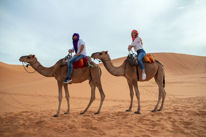 "Let's wander toghother 2 days 1 night in zagora ""Sahara Desert"""