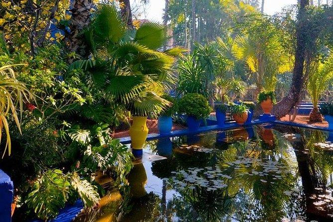Majorelle and Menara Gardens with Palmeraie Camel Riding Marrakech