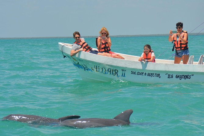 Sian Ka'an Adventure And Dolphin Sightseeing