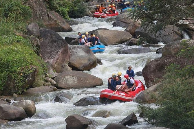 Rafting 5 km, ATV 30 Mins, Fly Fox and Jungle Tour From Phuket