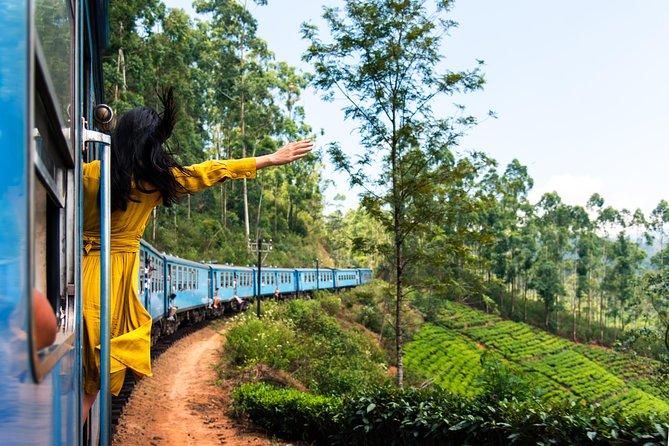 04 Days Tour- Sigiriya,Kandy,Nuwara Eliya,Ella & Udawalawe National Park