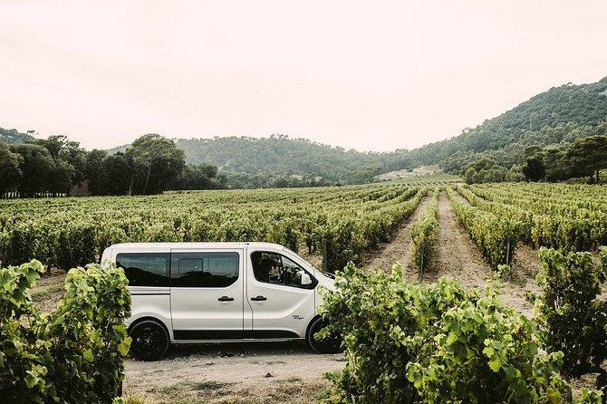 Nimes winetour to Pic Saint Loup