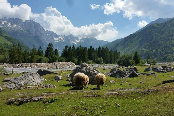 Tour of Komani Lake & Valbona Valley in two days