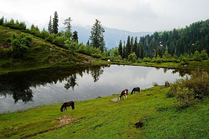 11 Days Naran, Hunza, Murree, Pakistan Tour Package photo 3