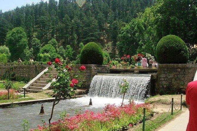 Exclusive Kashmir Tour Package