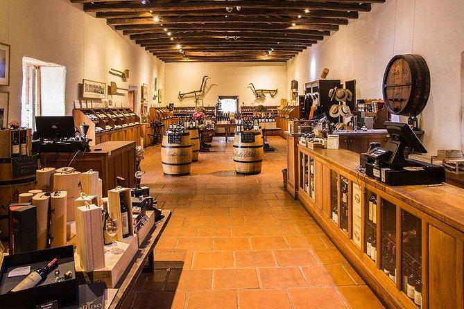 Full Day Concha y Toro & Santa Rita Vineyards from Santiago