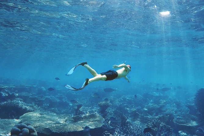 Luxor to Red Sea Hurghada - Full Day Tour Snorkeling Adventure