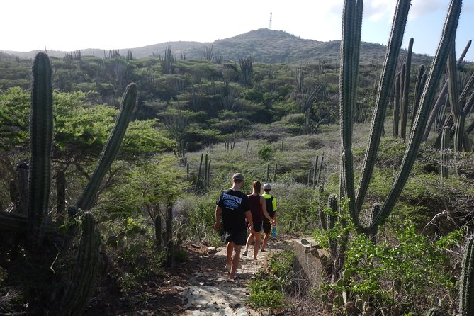 Eco-friendly private hike to the highest point of Aruba photo 8