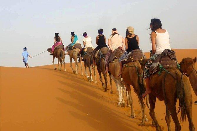 3 days from Fez Desert Marrakech