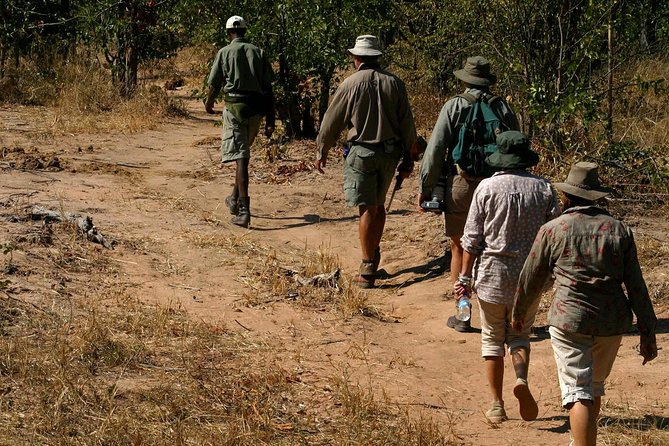 Half-Day Nature Walk in Mosi-oa-Tunya National Park from Livingstone