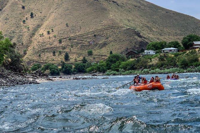 Riggins Idaho half-day rafting trip on the Salmon River