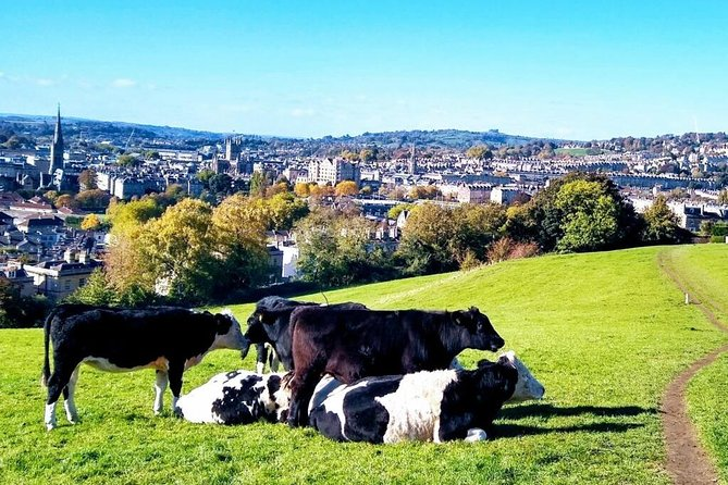 Walk with views over Bath