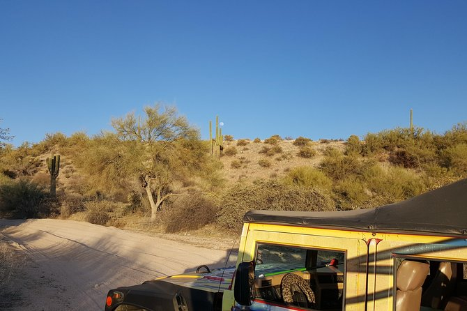 Sonoran Desert Hummer/Jeep Night Tour and Critter Hunt