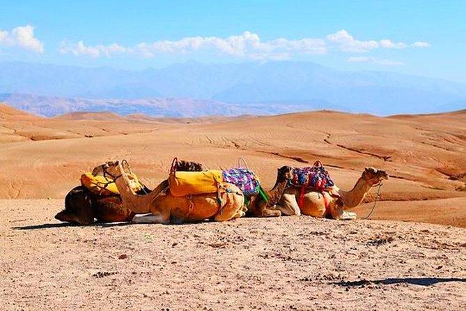 Desert Agafay and Atlas Mountains & Camel ride Day Trip From Marrakech, Marrakech, Ciudad de Marruecos, MARRUECOS