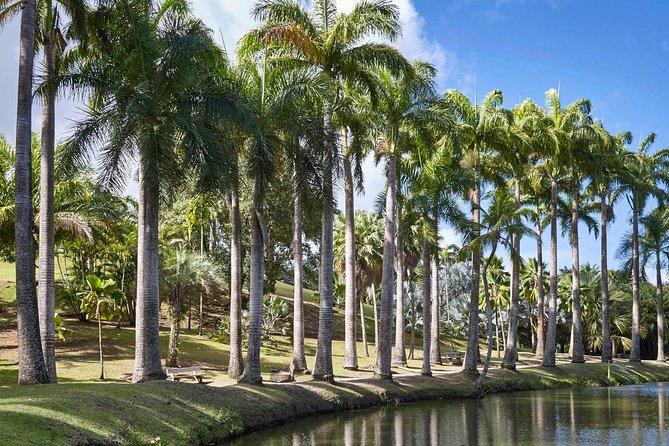 garden of Habitation Clement