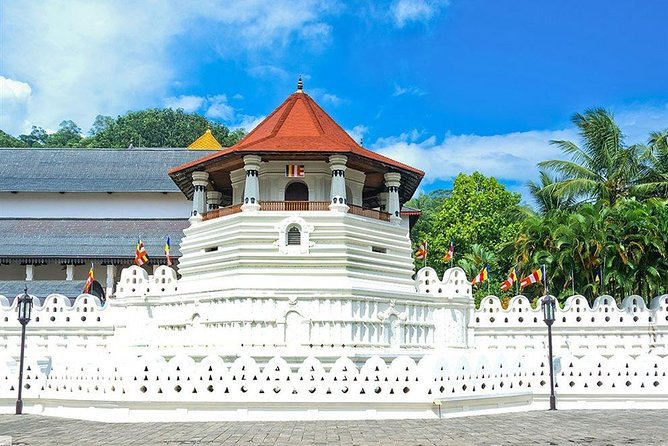 Kandy City Tour by Lux Tours Lanka photo 1
