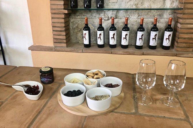 Tuscan Maremma Wine Tastings