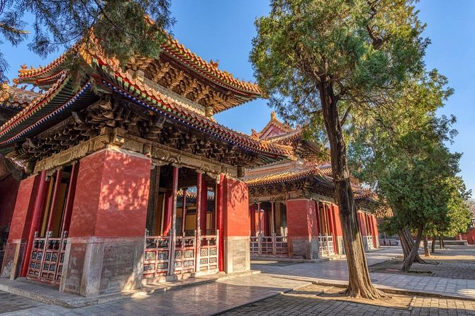 Qufu Private Walking Tour to Confucius Temple, Kong Mansion and Forest