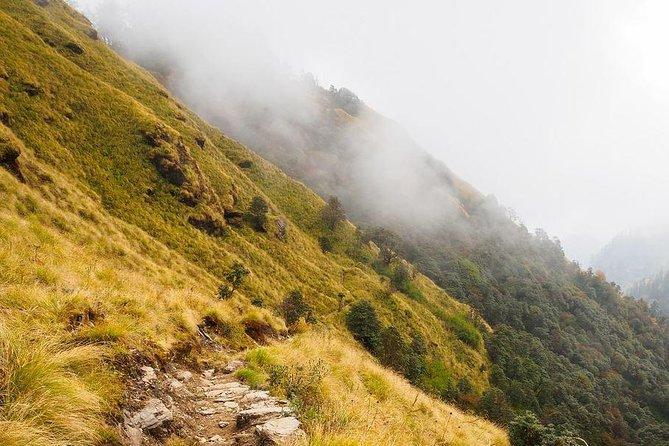 Khopra Hill Trek