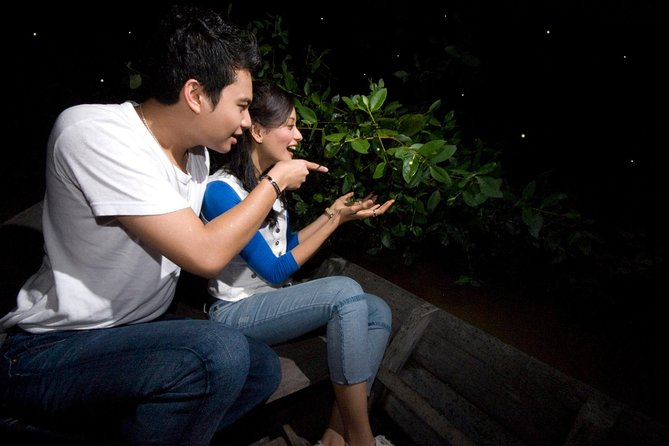 Private Tour: 3 in 1 Day Trip to Batu Caves, Bukit Melawati & Fireflies