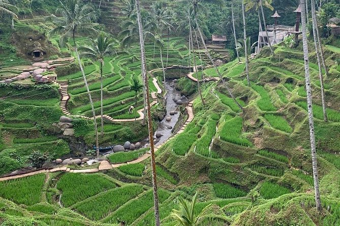 The best Ubud tour and fun activities in Bali photo 4