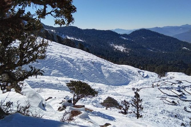 Ukhimath Chopta Hill Tour