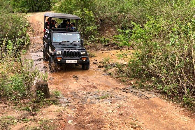 Private Safari - Udawalawa National Park