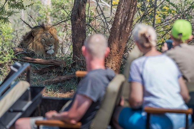 4 Day Wildlife Safari and Panorama Route