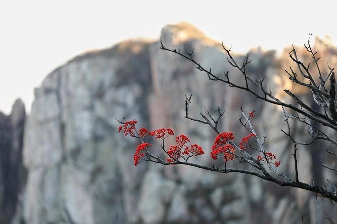 2-Day Private Sightseeing Tour of Qufu City Highlights and Mount Tai