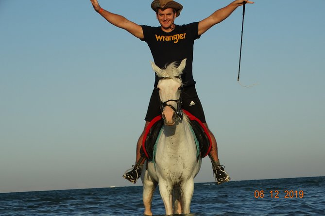 Private 2 Hours Horse Riding With Professional Trainer At Desert &Sea - Hurghada