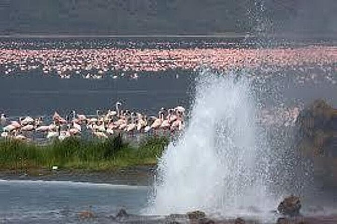 6 Days -Maasai mara/LAKE NAKURU BOGORIA AND BARINGO