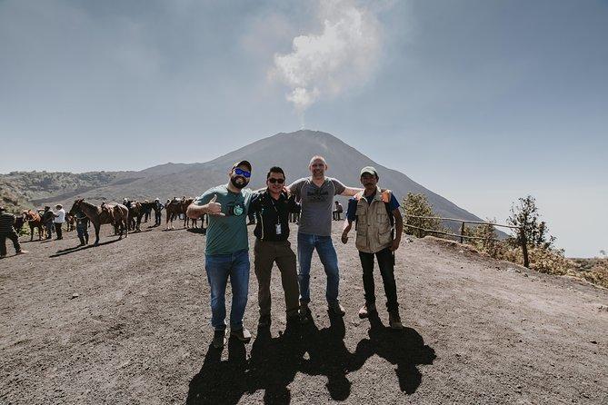 PACAYA VOLCANO, Shore Excursion in Guatemala.