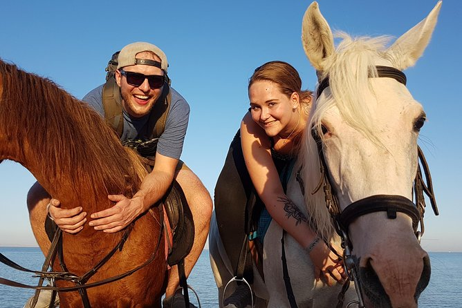 One hour Horse Riding At Amazing Desert - Hurghada photo 8